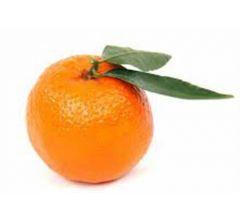 Fruits Best Hoffmanns Clementinen